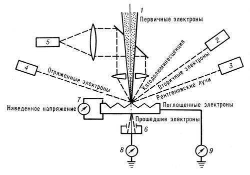 """Значение слова  """"Электронный микроскоп """" в Большой Советской Энциклопедии."""