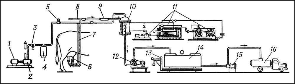 Схема доильной установки с молокопроводом: 1. 4. и расчет процесса машинного доения коров и первичной обработки...