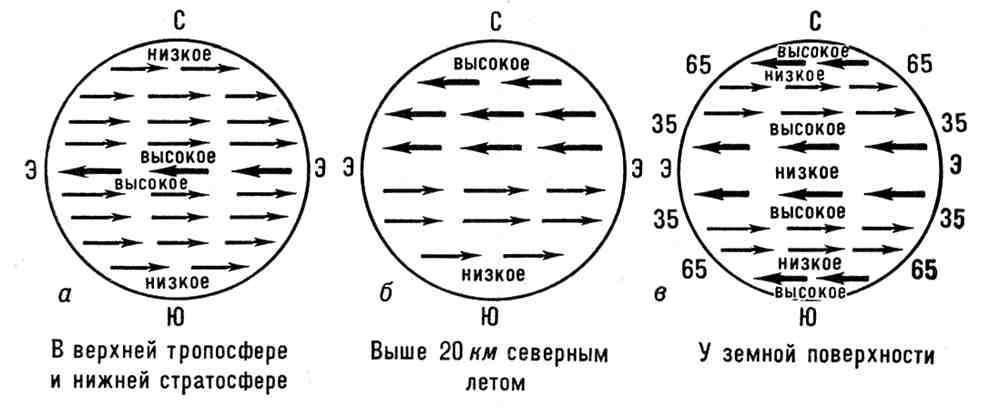 Зональные переносы (схема) (изображение) - значение слова, определение слова, слово означает VseslovA.